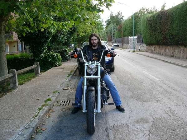 HD Street Bob